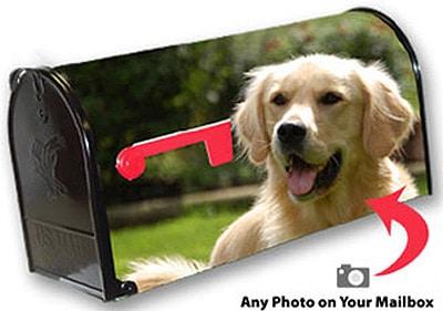Custom Photo Mailbox Covers