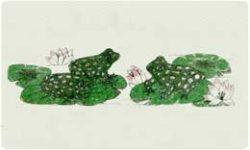 Bacova Mailbox Frogs 10332