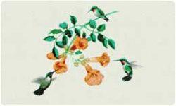 Bacova Mailbox Hummingbirds 10013