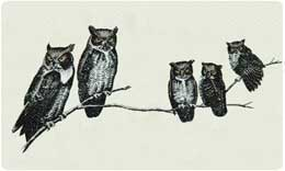 Bacova Mailbox Owls 10034