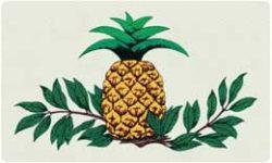 Bacova Oval Pineapple 10080