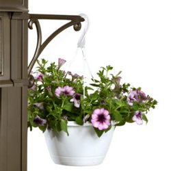 Whitehall Balmoral Mailbox Deluxe Plant Hook