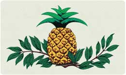 Bacova Oval Pineapple 10080