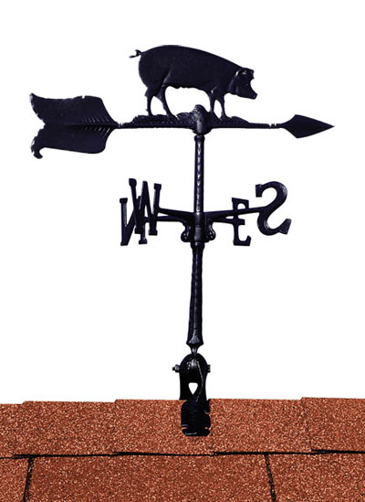 Whitehall 24 Inch Hog Accent Weathervane