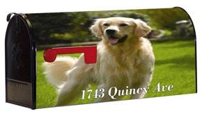 Custom Photo Wrap Mailbox Lettering